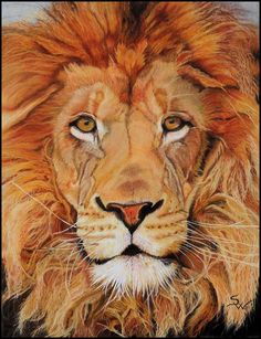Face to Face by SWart4u on DeviantArt painting of a lion