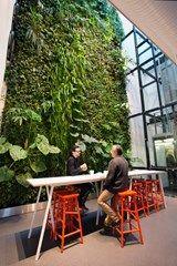 Vertical garden in Malmö / Växtvägg i Malmö. Landscape Concept, Landscape Walls, Growing Succulents, Succulents Garden, Vertical Garden Design, Vertical Gardens, Planting Bulbs In Spring, Dubai Miracle Garden, Garden Solutions