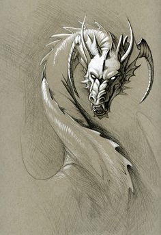 greyscale dragon by hibbary on deviantART Mythological Creatures, Fantasy Creatures, Mythical Creatures, Fantasy Dragon, Fantasy Art, Black Art Tattoo, Tattoo Art, Dragon Sketch, Frog Sketch