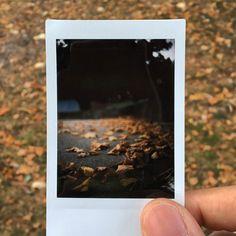 Instantflex - A Timeless Camera for Everyone Polaroid Instax, Instax Mini Camera, Instax Mini Film, Fujifilm Instax, Instax 210, Polaroid Pictures, Polaroid Ideas, Fair Weather Friends, Autumn Aesthetic