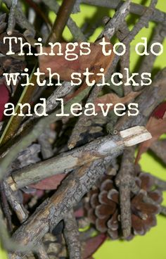 Things to Do with Sticks and Leaves from Mummy Mummy MUM