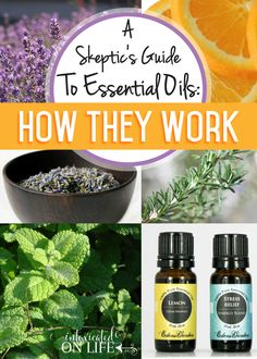 Join our Skeptics Guide to Essential Oils: What are they? How do they work?! @ IntoxicatedOnLife.com #EssentialOils #Skeptics