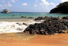 Wedding Photography, Album, Beach, Water, Outdoor, The Beach, Gripe Water, Outdoors, Beaches