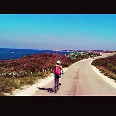 This storm outside makes me want to be back in Australia cycling 22KM around Rottnest Island  #Australia #Perth #rottnest #rottnestisland #summer #holiday #sun #sunny #bicycle #cycling #exercise #training #running #triathlon #training #athlete #f4f #photooftheday #picoftheday #instagram #instagood #instapic #love #lovely #likeforlike #happy #follow4follow #irish #sea #scenery #nature by jenni_sher http://ift.tt/1L5GqLp