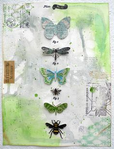 Bug display, artfully done