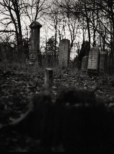 A hidden Civil War Era Graveyard taken in Hancock County Kentucky with a Mamiya 645 1000s Medium Format camera using Ilford Delta 100 film. I saw this area almost every day, and stopped to see what was in the woods. When I got there, on the hill-side was this graveyard.
