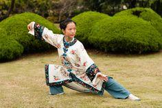 tai chi chuan China : posture : the snake