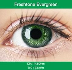 f375f129ea9b2 Evergreen Colored Contacts Freshtone Lenses come in 3 tone Blends, 3 tone  Impressions, and