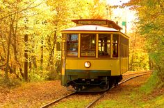 Ride the Lake Harriet Trolley to Lake Calhoun. This ride is beautiful in the fall. In Minneapolis