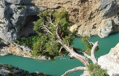 Exploring the most gorgeous gorge in Europe- Verdon Gorge.