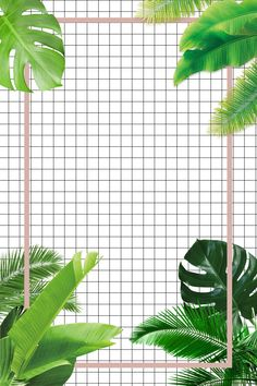 Green Plant Ins Ins Wind Ins Wind Advertising Background Iphone Wallpaper Grid, Wallpaper Doodle, Pop Art Wallpaper, Trippy Wallpaper, Plant Wallpaper, Cute Wallpaper Backgrounds, Aesthetic Iphone Wallpaper, Cute Wallpapers, Neon Light Wallpaper