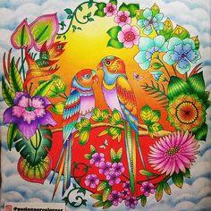 """Pareja de aves del libro """"La Jungla Mágica"""" de Johanna Basford"""