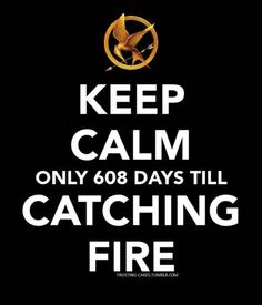 Catching Fire: November 22nd, 2013. I don't think I can wait that long!!