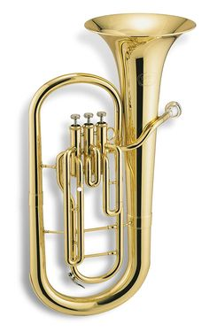 Humor Stagg Eb Three Valve Tenor Horn Brass Body Clear Lacquer Finish *fast Postage* Alto Horns