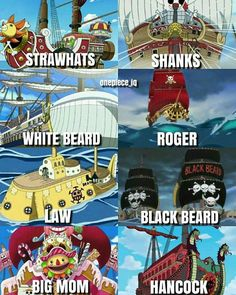 Which pirate crew will you join ?