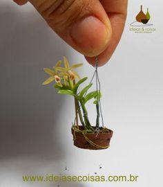 100 Pcs Seeds Mini Bonsai Orchid Seeds Indoor Home Miniature Flower Pot Garden Plants Four Seasons Beauty 2016 Rare Flowers Gift Unusual Plants, Rare Plants, Exotic Plants, Miniature Orchids, Miniature Plants, Bonsai Seeds, Bonsai Plants, Orchid Seeds, Flower Seeds