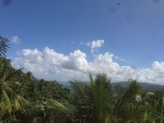 Over 6 acres of land in Orange Bay, Portland. Make your offer now! Jamaica Country, Cheap Houses For Sale, Land For Sale, Portland, Property For Sale, Acre, Landing, Clouds, Outdoor