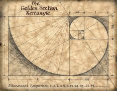 The ancient Greeks said that the Golden Section was a rule of proportion that linked mathematics with beauty. Much of their architecture was designed according to this rule. I also included the Fibonacci Sequence, which directly relates to the Golden Mean Proportion Architecture, Sacred Architecture, Architecture Design, Ancient Greek Architecture, Geometry Art, Sacred Geometry, The Golden Mean, Art Texture, Marvel Universe