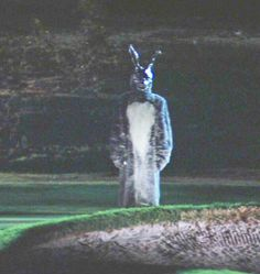 Donnie Darko / 2001
