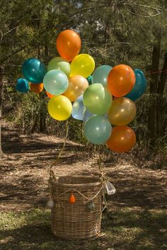 Hot air balloon/vintage transport Birthday Party Ideas   Photo 1 of 22
