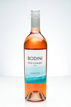 Bodini