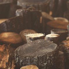 Yo por si acaso empiezo a preparar la madera para hacer fuego. Porque como no sabemos qué es lo que llega dentro de 7 días más vale andar preparadas. Quién sabe lo que nos deparará el invierno.  #happyweekend #iamready #woods #winter #sevendays #organic #slow #geometrise #7dias #ouiclementine