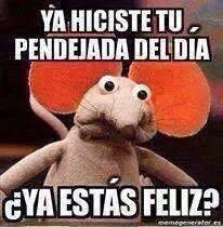 No Pinche MeMes!: Para el pendejo que nunca falta...