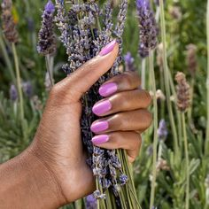 It's #NationalRelaxationDay! Tell us your favorite way to relax in four words or less. We'll go first! Luscious pink-y purple nails. 💜 #LuckyLuckyLavender #ColorIsTheAnswer #PurpleNails #PurpleMani #ZenLife #MeTime #SelfCare #NailCare #ManiPedi #OPIObsessed #HealthyNails Light Purple Nails, Purple Nail Polish, Gel Nail Polish, Interview Nails, Opi Red, Long Lasting Nail Polish, Lavender Nails, Party Nails, Healthy Nails