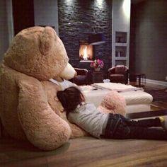Giant teddy bear + cuddles