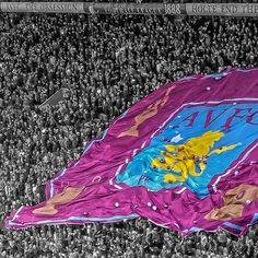 Holte End in Birmingham Aston Villa Fc, Football Fans, Four Square, Lions, Wall Ideas, History, Birmingham, Club, Board