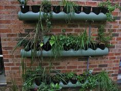 I hope I can find the time to do this this summer....wouldn't this be a great way to grow herbs and other small things?