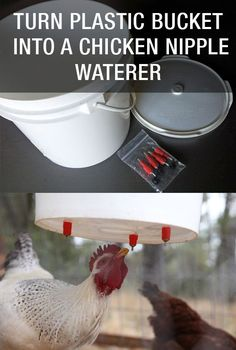 Turn Plastic Bucket Into A Chicken Nipple Waterer: http://www.mychickencoop.net/turn-plastic-bucket-chicken-nipple-waterer/