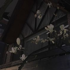 Find images and videos about vintage, grunge and aesthetic on We Heart It - the app to get lost in what you love. Gray Aesthetic, Night Aesthetic, Aesthetic Themes, Aesthetic Grunge, Aesthetic Photo, Aesthetic Pictures, Aesthetic Anime, Aesthetic Backgrounds, Aesthetic Wallpapers