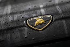 Lamborghini badge at Morrie's Luxury Auto. #exotic #luxury #cars