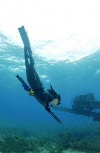 freedive spearfishing