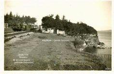 Maltepe / Küçükyalı / Çamlık 1936