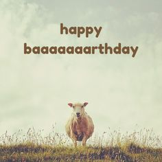 Happy Baaaaaaaaaaa rthday! Click on this image to see the biggest selection of birthday wishes on the net!