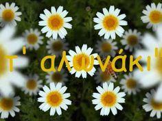 Κάτω στης Μαργαρίτας τ' αλωνάκι_0001.wmv Greek Music