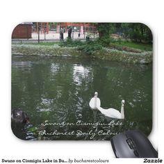 Swans on Cismigiu Lake in Bucharest Mousepad Bucharest, Swans, Mousepad, Colours