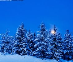 Morning moon & heavy snow in Lapland. Lappland, Native Country, Winter Magic, Winter Pictures, Romantic Couples, Country Life, Winter Wonderland, Old Things, Koti