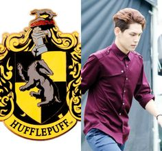 HP&KPOP // Hufflepuff // Wonpil of DAY6