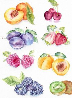 Watercolor Food Art Watercolour Aquarell Essen Kunst Aquarell – New Ideas Watercolor Fruit, Fruit Painting, Watercolour Painting, Watercolor Flowers, Painting & Drawing, Fruit Illustration, Food Illustrations, Watercolor Illustration, Fruits Drawing