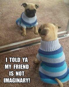 Gotta love dogs! Never doubt an imaginary friend!