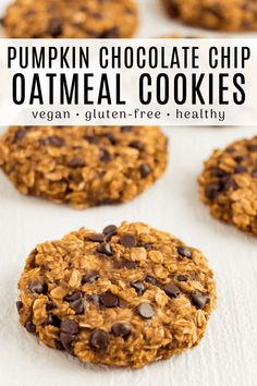 These pumpkin chocolate chip oatmeal cookies are a delicious fall treat! They are chewy, vegan, gluten-free, and made with healthy ingredients. Make this easy recipe with just one bowl in 30 minutes. Pumpkin Oatmeal Cookies, Oatmeal Chocolate Chip Cookies, Pumpkin Chocolate Chips, Pumpkin Dessert, Vegan Chocolate, Delicious Chocolate, Vegan Baking Recipes, Healthy Dessert Recipes, Healthy Baking