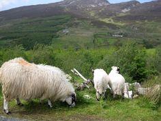 Inishowen, Donegal, Ireland