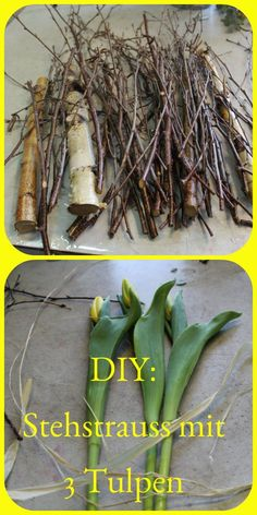 DIY: Tulpenstehstrauss als exklusiver Blumenstrauss