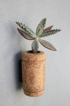 Succulent Cork Magnet, Grape Leaf Kalanchoe. $3.50, via Etsy. very cool.