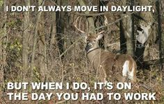 About to set out for a hunting trip? Make sure to check out this awesome deer hunting meme collection first. Deer Hunting Memes, Funny Hunting Pics, Funny Deer, Hunting Girls, Bow Hunting, Hunting Stuff, Archery Hunting, Coyote Hunting, Pheasant Hunting