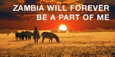 1st September 2004, the day I moved to Africa and I began to explore and fall in love with this incredible continent.