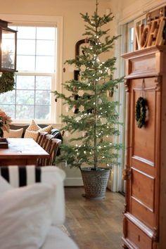 Christmas simplicity, Christmas tree..